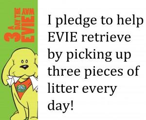 Pledge example
